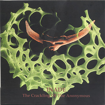The Crackling Of The Anonymous (2LP)